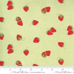 Sunday Stroll fabric by Moda