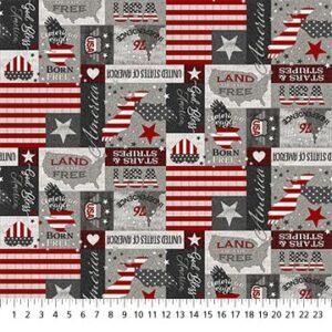 My America fabric by Deborah Edwards for Northcott
