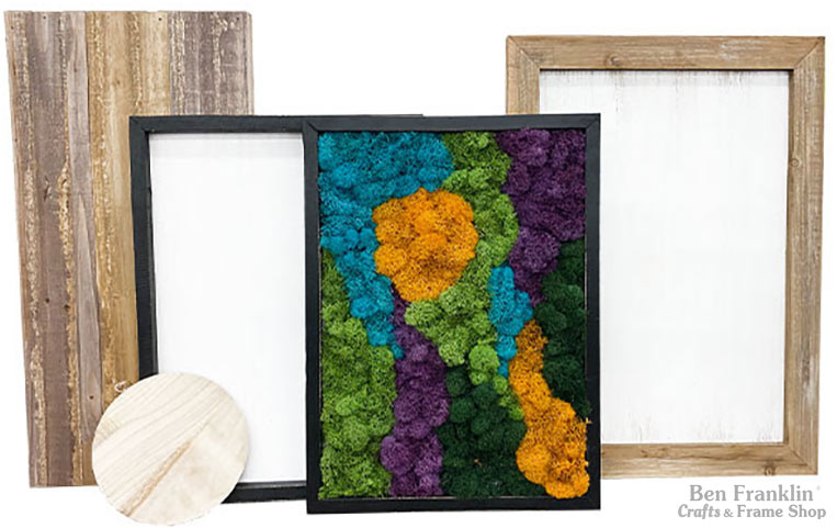 Moss Art Frame