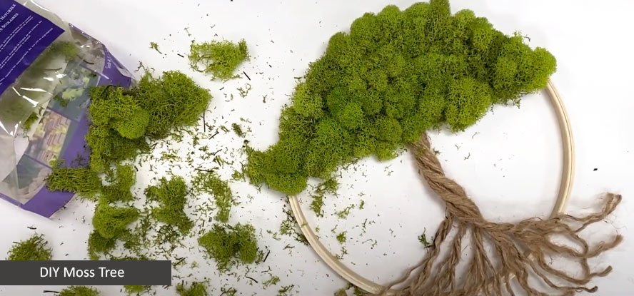 Moss Tree Project